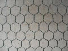 ga  anzied hexagonal wire mesh