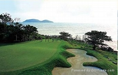 迷你高尔夫设计施工
