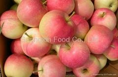 2012 new gala apple
