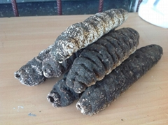 Dried Belizean Sea Cucumbers