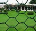 gabion wire mesh 4