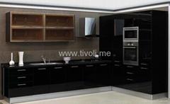 kitchen cabinet- modern and elaborately designed