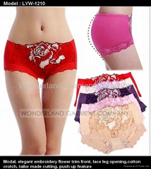 EMBROIDERY LACE BRIEF