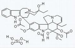 Vincristine Sulfate  , Apocynaceae sp,Leurocristine sulfate salt cas no 2068-78-