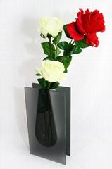 Glass Modest Vase