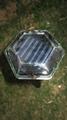 新一代户外太阳能驱鼠器 5