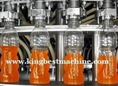 Fruit Juice Filling System