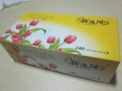 Box Facial Tissue 100 sheets