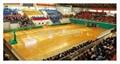 木地板篮球场 5