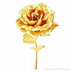 黄金箔玫瑰花