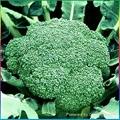 Frozen broccoli,IQF broccoli,Frozen vegetable 1