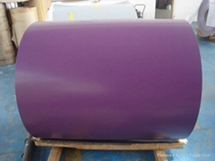 Prepainted Galvanized Steel Coil From CJC STEEL