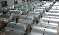 Hot Dipped Galvanized Steel Coils With Best Quality