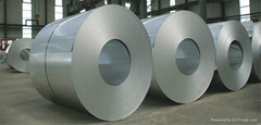 HDG Galvanized Steel Coils With Competitive Price