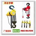 大噸位專用環鏈電動葫蘆