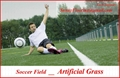SOCCER artificial grass ( synthetic turf - artificial lawn ) 5