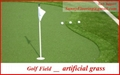 GOLF artificial grass ( synthetic turf - artificial lawn ) 3