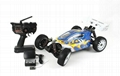 ZD Racing Brushless Electric Buggy