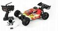 ZD Racing  Nitro B   y