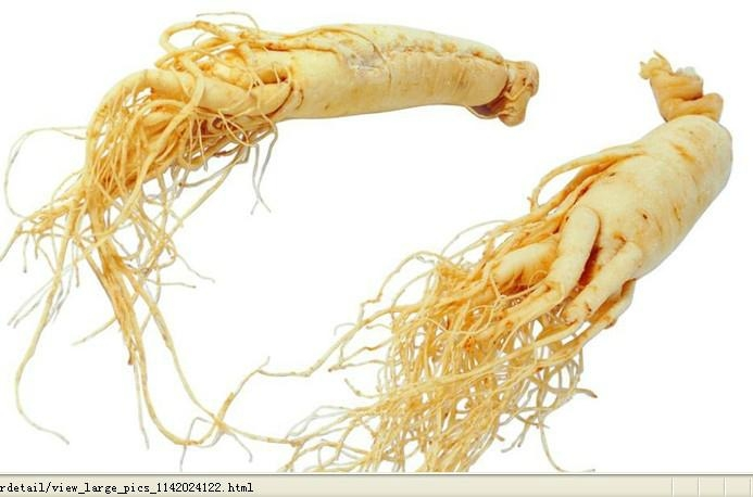 ginseng extract  3
