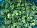 frozen broccoli  1