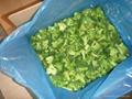 frozen broccoli  3