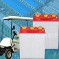 高爾夫球車蓄電池 1
