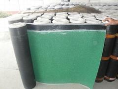 SBS-Modified Asphalt waterproof Membrane with mineral granules