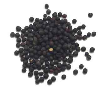 Black Rape Seed 1