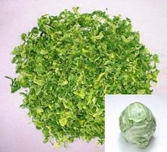 supply dried cabbage