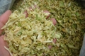 supply dried cabbage 2