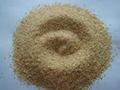 supply dehydrated garlic 3