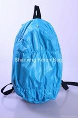 2012 New style Waterproof Backpack