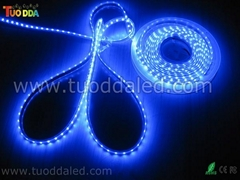 Non-waterproof SMD5050 60LED/M LED Strip lights