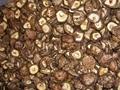 dried mushroom 1