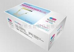 细菌性阴道病检测试剂卡