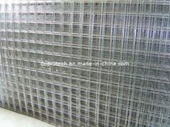 Welded Wire Mesh Panel / Welded Wire Mesh Roll