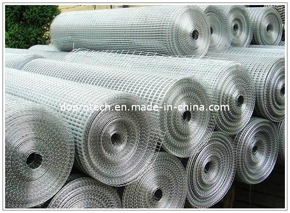 Welded Wire Mesh Panel / Welded Wire Mesh Roll 4