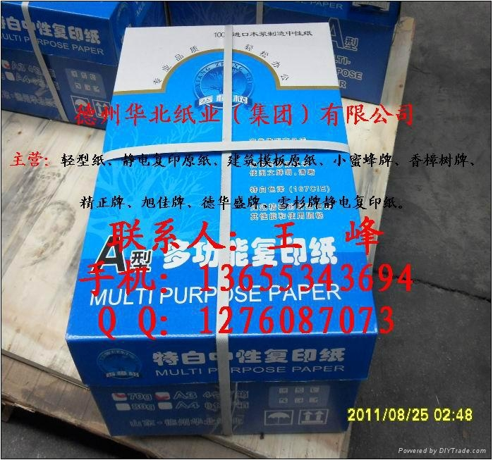 供应香樟树牌全木浆静电复印纸 1