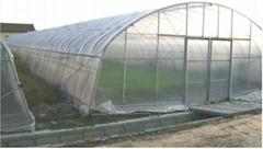 The film greenhouse