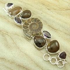 天然鹦鹉螺化石手链