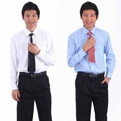 Freeshipment!male autumn business shirts .