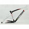 Brazil V-WORKS VICINI Full Carbon Fiber Mountain Bike Bicycle Frame (black,white 1