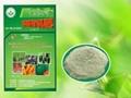 安信保水精制有机肥II