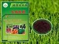 微生物菌剂生物配肥