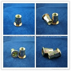 m8 flat head semi-hex body rivet nut