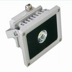 LED floodlight PQ-115FL5W