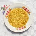 辣椒籽 1
