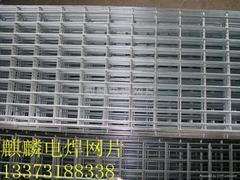 建筑用黑钢丝焊接网片