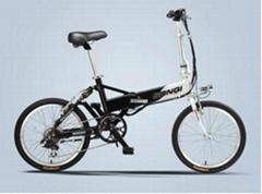 lithium e bike